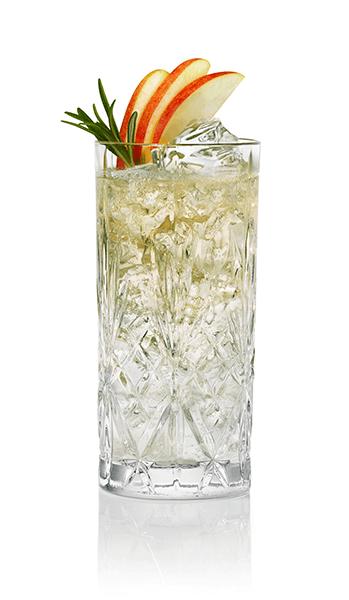 "Friedrichs Dry Gin Glas ""MELODIA"" 360 ml"